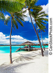 Empty hammock between palm trees on tropical beach with blue sky