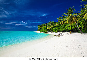 Amazing beach on a tropical island with palm trees over the lagoon