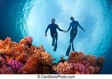 Freedivers gliding over the bright coral reef. Red Sea,...