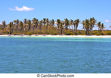isla contoy in mexico day wave - blue isla contoy in mexico...