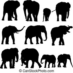 Elephant collection - Over ten silhouettes of elephants...