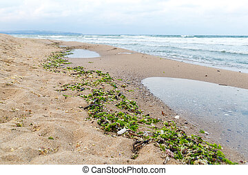 Environmental issue - muddied seashore ocean, natural mud...