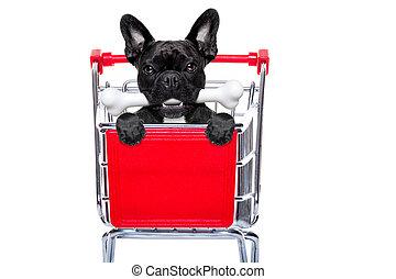 shopping cart dog - french bulldog dog inside a shopping...