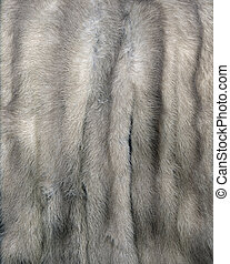 Mink Fur Gray - Mink fur for use as a background texture