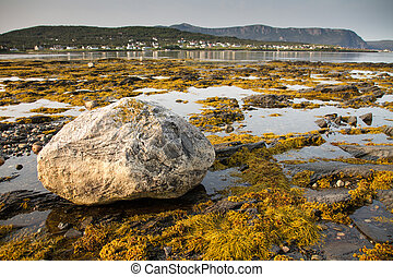 Rocky Harbour Erratic - Large Glacial Erratic lies on the...