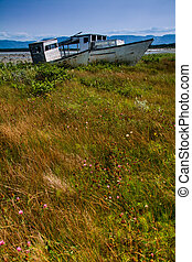 Old Fishing Vessels lie derrelict on the shore - abondoned...