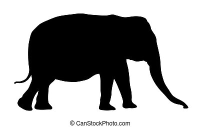 Elephant - Vector illustration of elephant silhouette