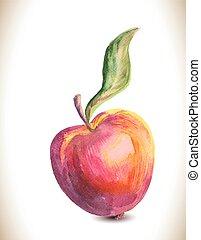 Watercolor vector apple