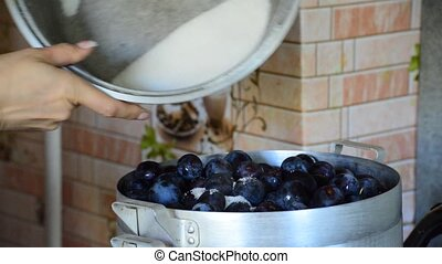 woman pours sugar plums for jam - A woman pours sugar plums...