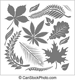 Leaf collection - vector set Stock illustration