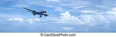 Jet aircraft in flight - Panoramic composition of a jet...