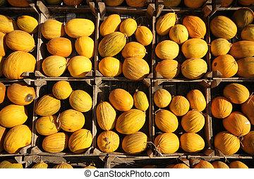 Melones, orgánico