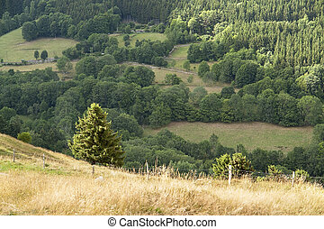 Vosges scenery - scenery around the Vosges, a mountain range...