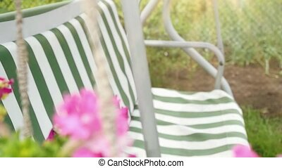 Lonely swing and flower at summer sunlight