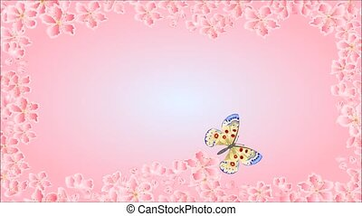 Video butterfly parnassius - Animation of illustration...