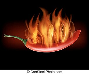 Red hot chili pepper on fire.