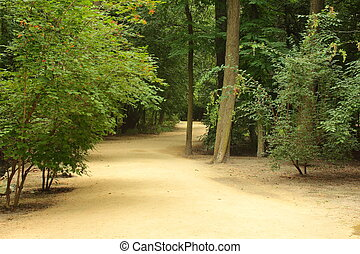 Trail in the park