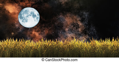 wheat field - illustration of the moon and a wheat field