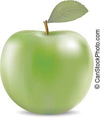 Vector illustration of big green apple