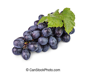 bunch of grapes - bunch of ripe black grapes with water...