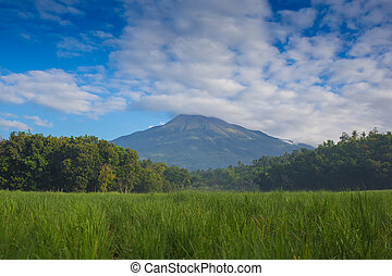 The Classic Cone Shape of Arenal Volcano in Costa Rica. -...
