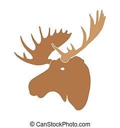 moose deer head