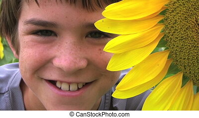 Boy Beside Sunflower - Close-up of boy beside sunflower,...
