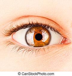 humano, ojo
