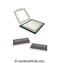 Central Processing Unit Chips and Pins on white Background