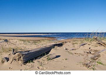 seaboard White Sea Russia, Arkhangelsk region