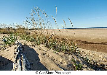 White Sea Russia, - Pomeranian coast White Sea Russia,...