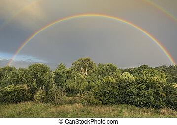 Double Rainbow - Double rainbow spanning an evening woodland...
