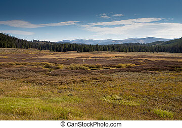 Landscape in Yellowstone National Park. - Vast and colorful...