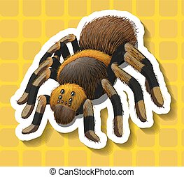 Poisionous spider on yellow background illustration