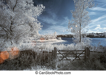 Landscape in infrared of lake in English countryside in...