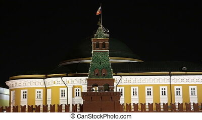 Moscow Kremlin and Flag of Russia at night