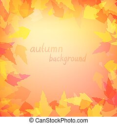 Leaves in warm colors - Autumn background with leaves in...