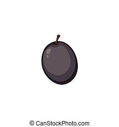 Vector Fruits - Black Olive