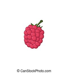 Vector Fruits - Raspberry - A freehand vector of a raspberry