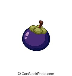 Vector Fruits - Mangosteen - A freehand vector of a...