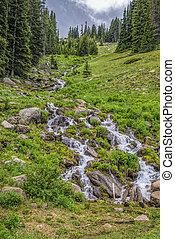 Rocky Mountain National Park, CO - Burbling mountain stream...