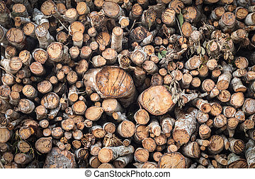 Pile of wood logs on truck