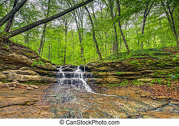 Tailwater Falls - A small yet beautiful waterfall tumbles...