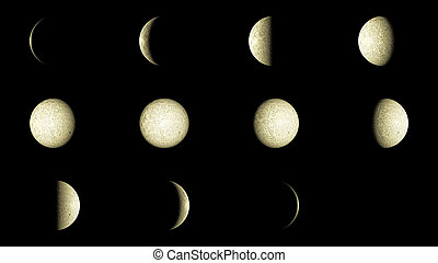 Moon phases - Set of 12 Moon phases