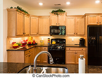 New Kitchen with Modern Fixtures