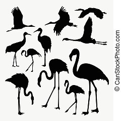 Flamingo in action silhouettes - Flamingo in action animal...