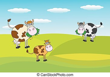 spotted cows grazing in a meadow