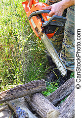 Chainsaw cutting wood in the forest