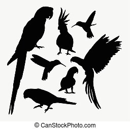 Parrot and hummingbird silhouettes - Parrot and hummingbird...