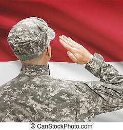 Soldier in hat facing national flag series - Indonesia -...